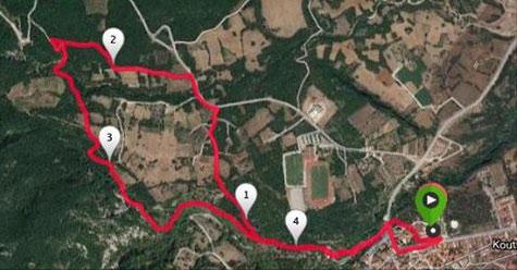 Melindra Trail 2016