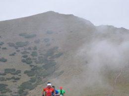 Gentiki Trail 2