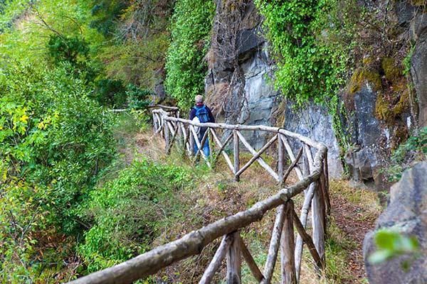vidra-trail