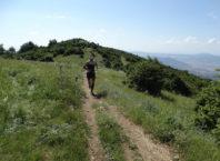 hortiatis_trail
