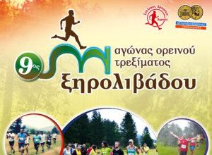 9os-Dromos-Ksirolivadou-Poster.