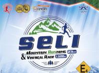 seli-2019-poster