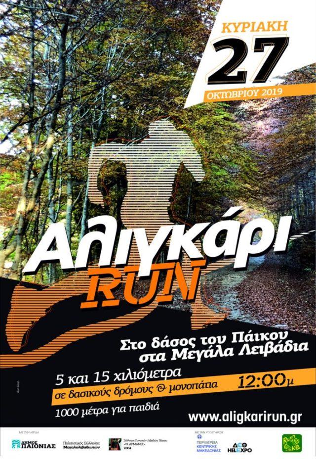 aligari-full_poster
