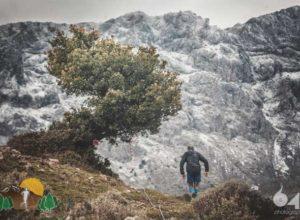 artemisio_mountain_running