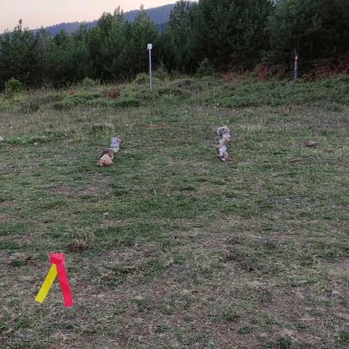 pourlia-trail-staria-23km